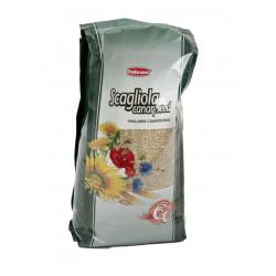 Hrana pentru Pasari Scagliola-Glant 1 Kg