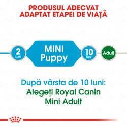 Hrana uscata caini ROYAL CANIN Mini Puppy Produs Adaptat Etapei de Viata