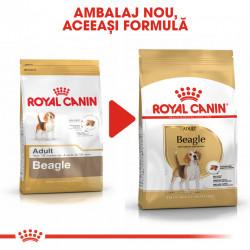 Hrana uscata caini ROYAL CANIN Beagle Adult Ambalaj nou