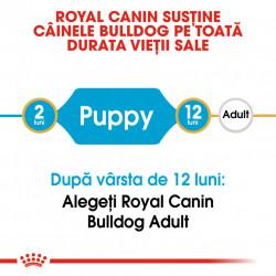 Hrana uscata caini ROYAL CANIN Bulldog Puppy sustinere pe toata durata vietii
