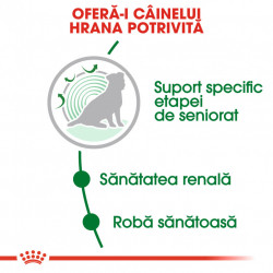 Hrana uscata caini ROYAL CANIN AGEING 12+ Hrana Potrivita