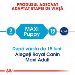 Hrana uscata caini ROYAL CANIN Maxi Puppy produs adaptat etapei de viata