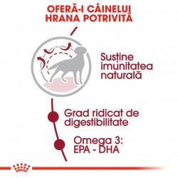 Hrana uscata caini ROYAL CANIN Medium Adult hrana potrivita