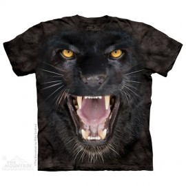 Aggressive Panther immagini