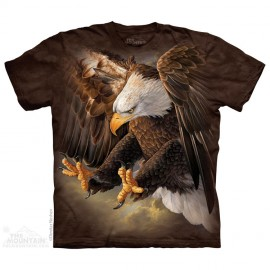 Freedom Eagle immagini