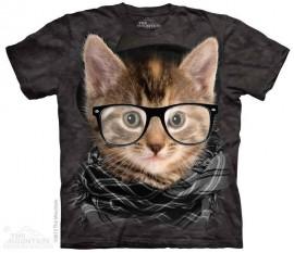 Hipster Kitten immagini