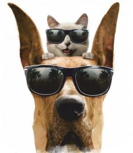 MAGLIETTA IN 100% COTONE DA DONNA  TITOLO: DOG immagini
