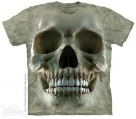 Big Face Skull imágenes