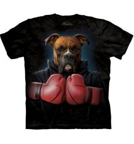Boxer Rocky immagini