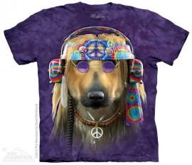 Groovy Dog immagini