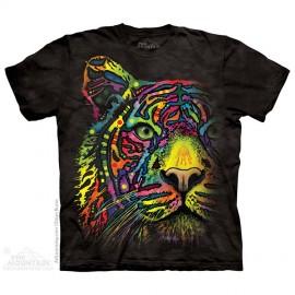 Rainbow Tiger immagini
