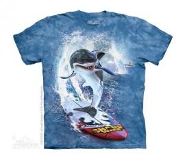 Shark Surf immagini