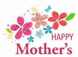 MAGLIETTA PER PREMAMAN, AMPIA VESTIBILITA' : HAPPY MOTHERS immagini