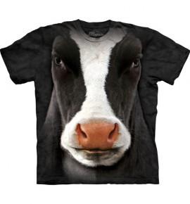 Black Cow Face immagini
