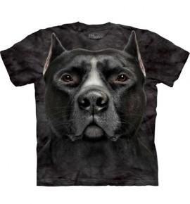Black Pitbull Head immagini