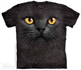 Big Face Black Cat immagini