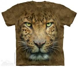 Big Face Leopard immagini