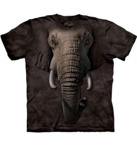 Elephant Face immagini