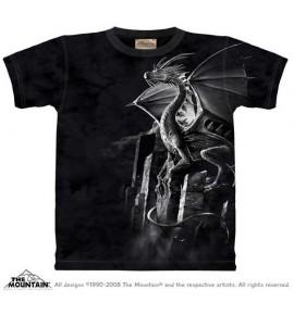 Silver Dragon immagini