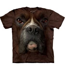 Boxer Face immagini