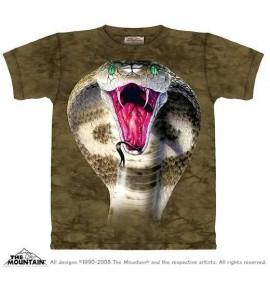 Cobra immagini