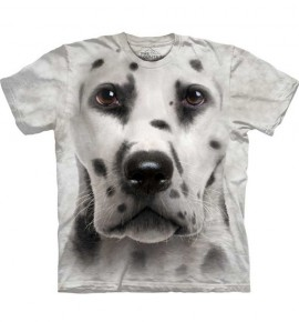 Dalmatian Face immagini
