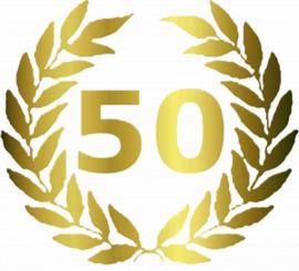 MAGLIETTA IN 100% COTONE UOMO/DONNA PER 50 ANNI TITOLO: PALME immagini
