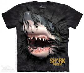 SHARK BLACK immagini
