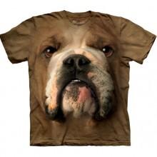 Bulldog Face