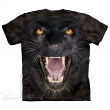 Aggressive Panther