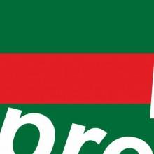 FELPA ROSA DA DONNA CON MARSUPIO E CAPPUCCIO  ORIGINAL FAKE