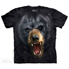 Aggresive Nature: Black Bear