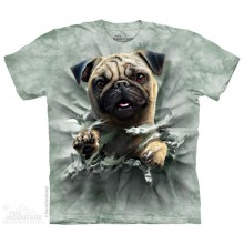 Pug Breakthru