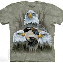 5 Eagle Collage