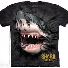 SHARK BLACK