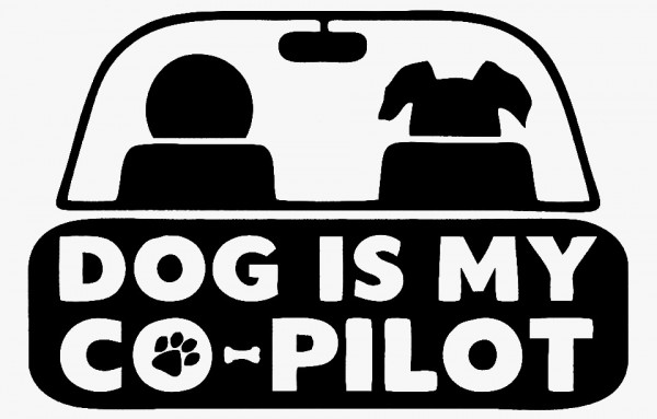 Imagens Autocolante - Dog is my co-pilot
