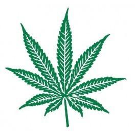 Autocolante - Folha de Cannabis 2