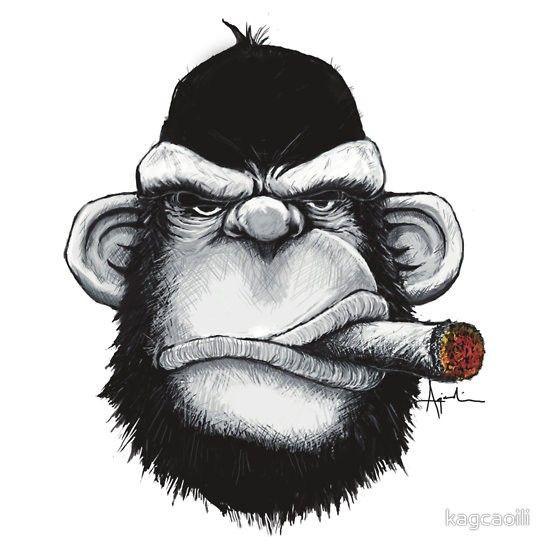 Imagens Autocolante Impresso - Macaco a fumar