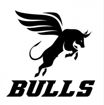 Autocolante com Bulls