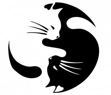 Autocolante - Gato ying yang
