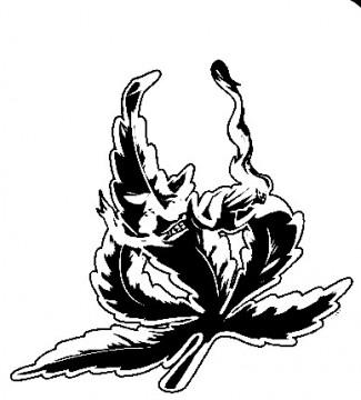 Autocolante - Cannabis Smoking