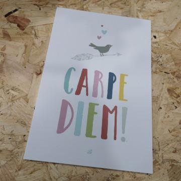 Placa Decorativa em PVC - Carpe Diem!