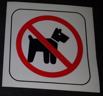 Proibido cães