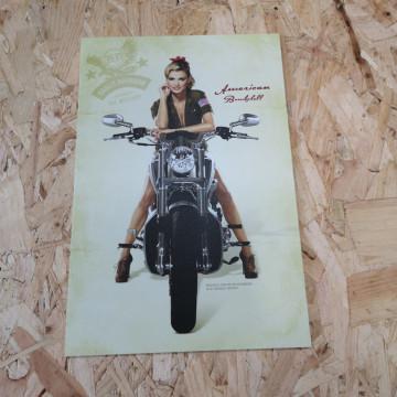 Placa Decorativa em PVC - Harley Davidson