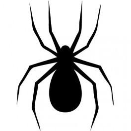 Autocolante - Aranha