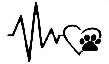 Autocolante com Batimento coração gato