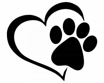 Autocolante - Coração Gato