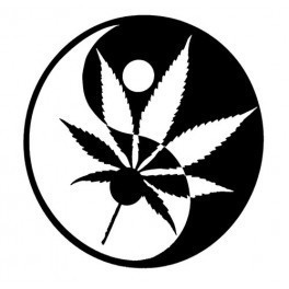 Autocolante - Ying-Yang Cannabis