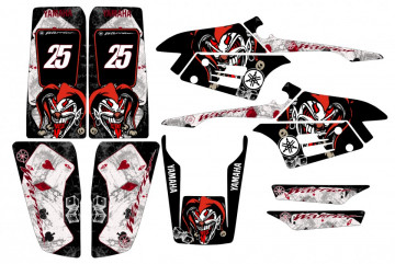 Kit Autocolantes Para Yamaha Warrior 350