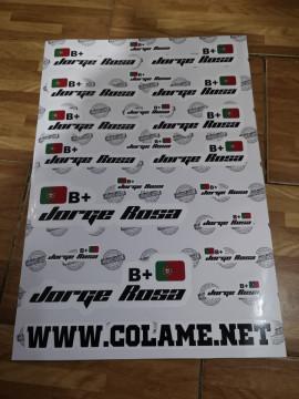 Folha / Pack de Autocolantes - Bandeira + Nomes + Grupo sanguíneo